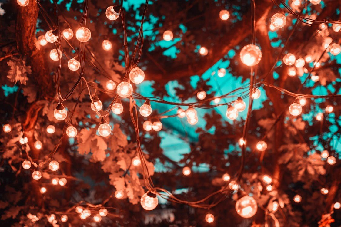 Sfeervolle afbeelding verlichting in een boom vanaf de onderkant gefotografeerd