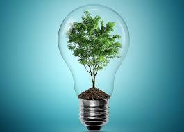 Een boom in een gloeilamp om zo duurzaamheid af te beelden